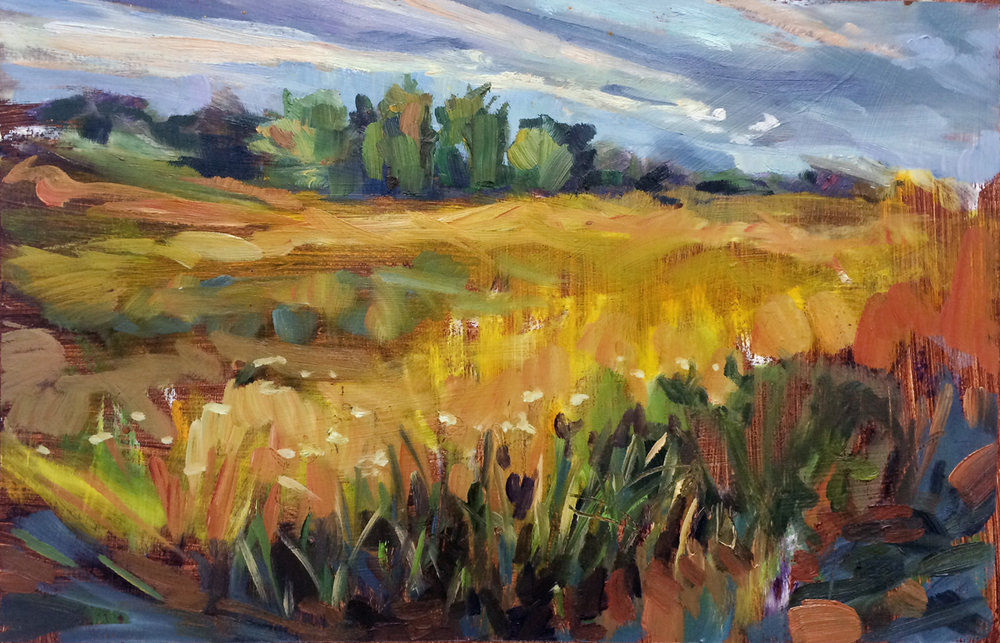 Restored Prairie plein air study.