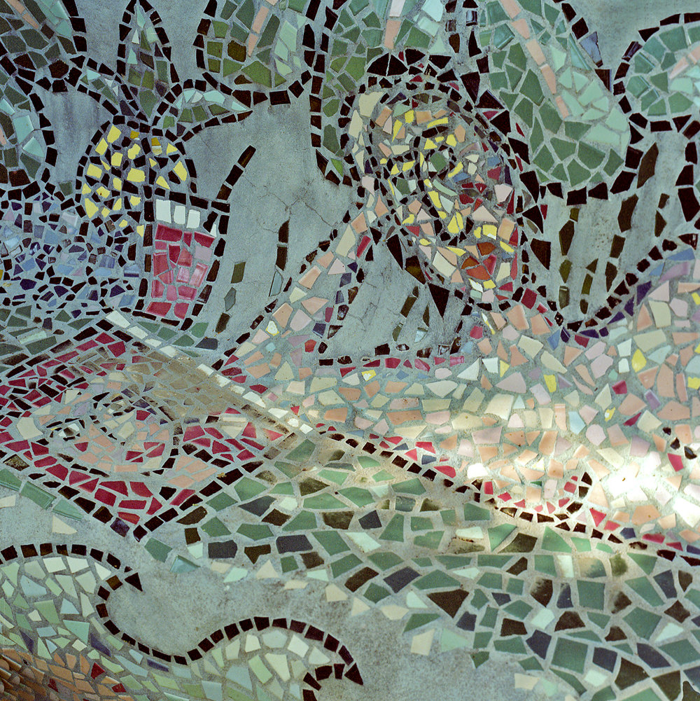 Detail of  Fish Bench , August 17, 1996