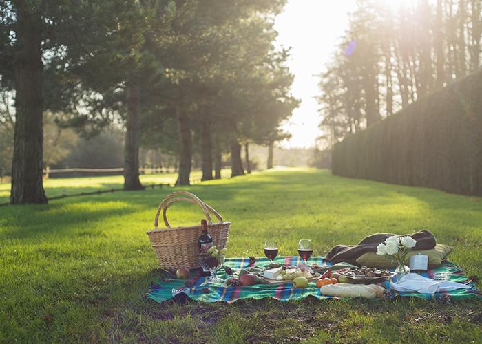 loyton-picnic.jpg
