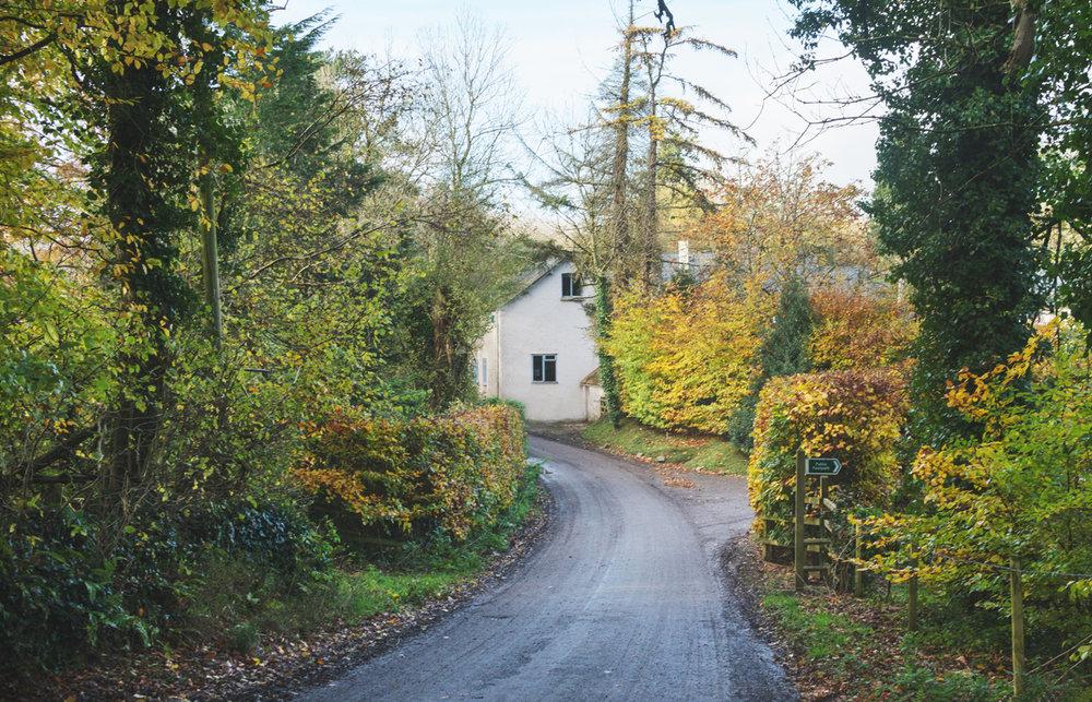 road_to_loyton.jpg
