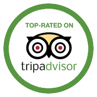 TripAdvisor_Badge_Loyton copy.png