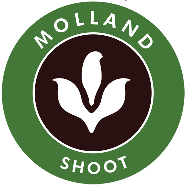 molland_badge_green.png