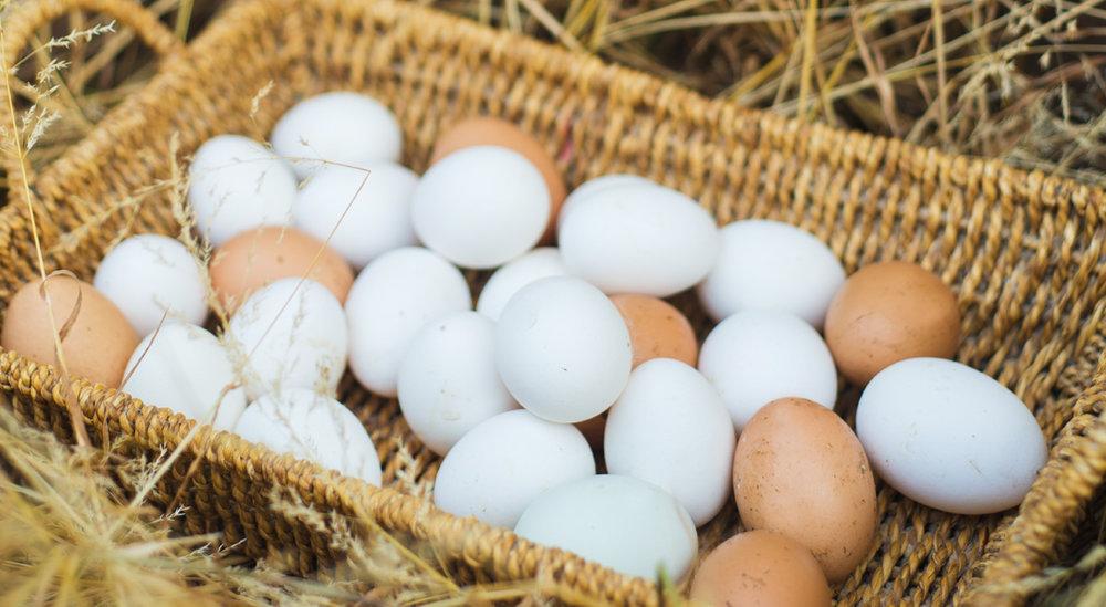 freah-eggs-loyton.jpg