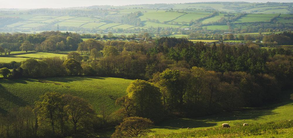 loyton-estate-management-the-view.jpg
