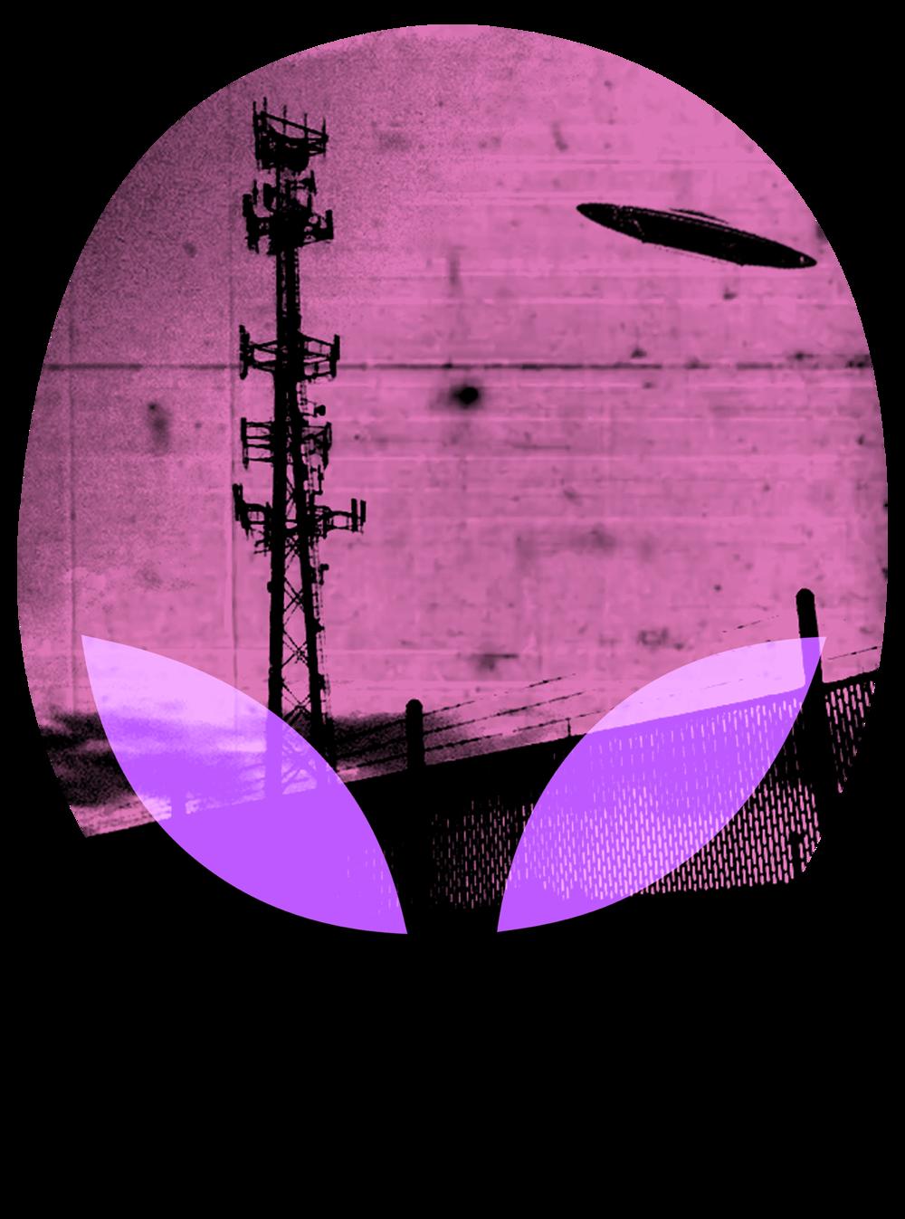 alien head ufo photo pink copy.png