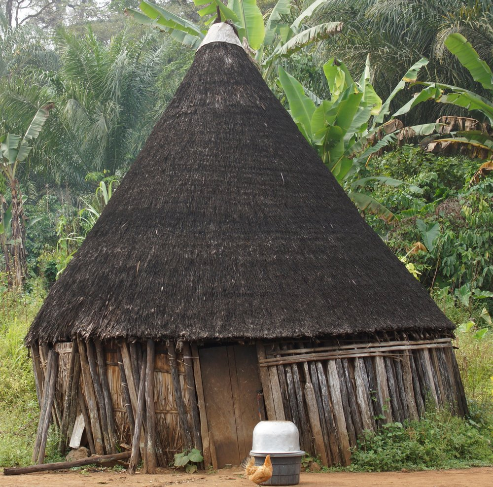 """Ndabechum"" A tradition Hut in the Bakossi region-"