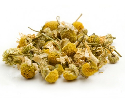 Egyptian Chamomile | From $10.00