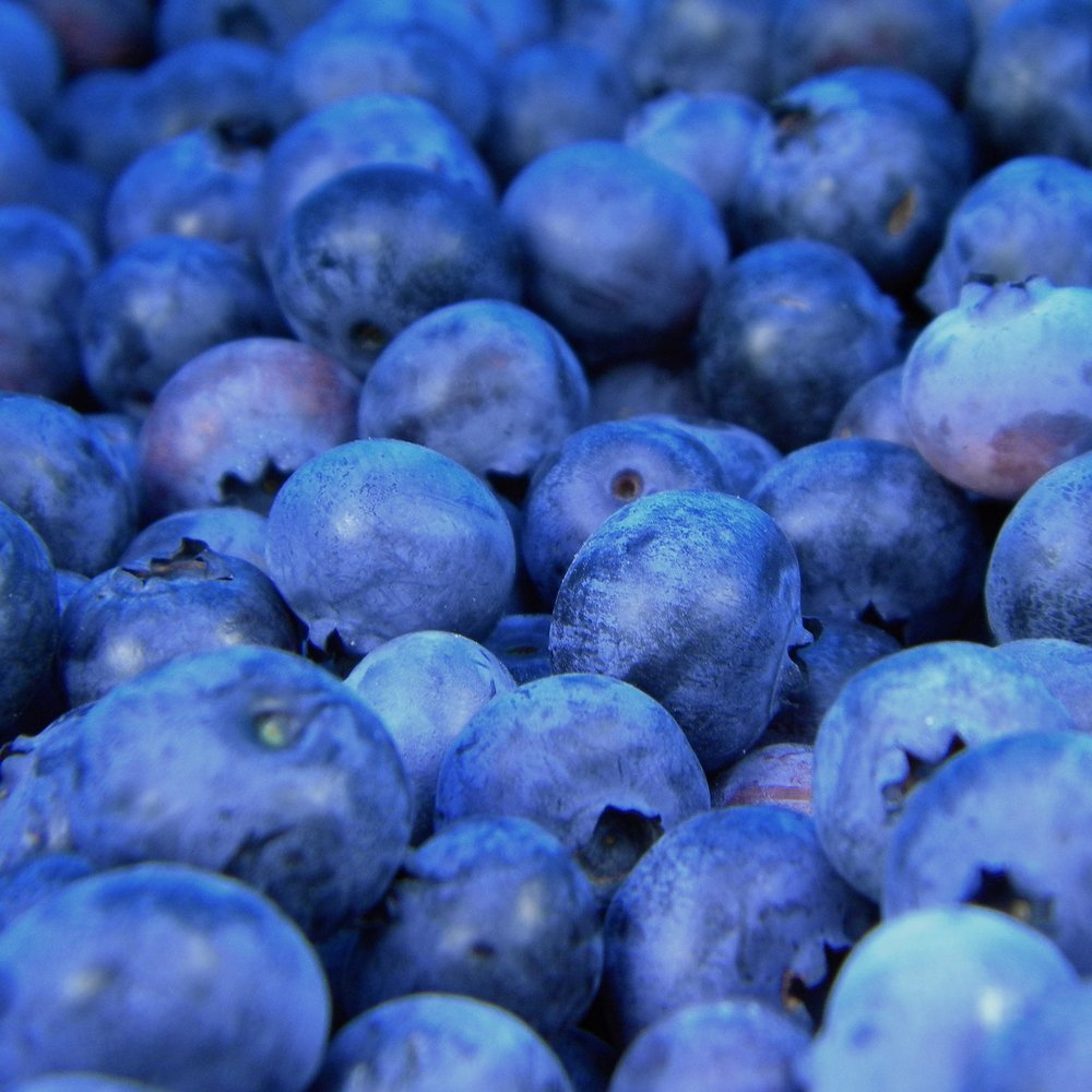 ANTIOXIDANTS ARE THE ANTIDOTE - BY DR. JASON BARRITT