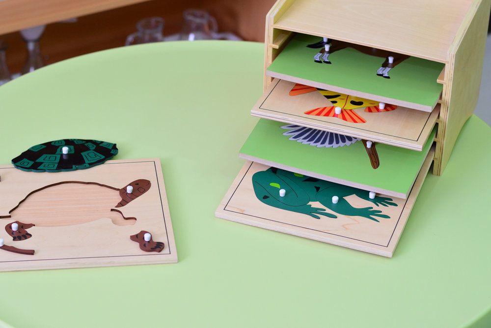 Montessori8.jpg