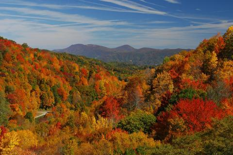 boone fall picture.jpg
