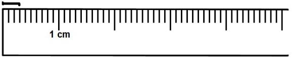 The Line Segment Above Is 2 Centimeter Long Or 20 Millimeters