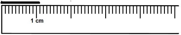 The Line Segment Above 1 Cm And 1 Mm Or 11 Mm