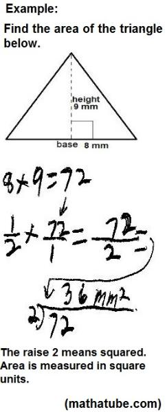Area Of A Triangle Worksheets Math A Tube
