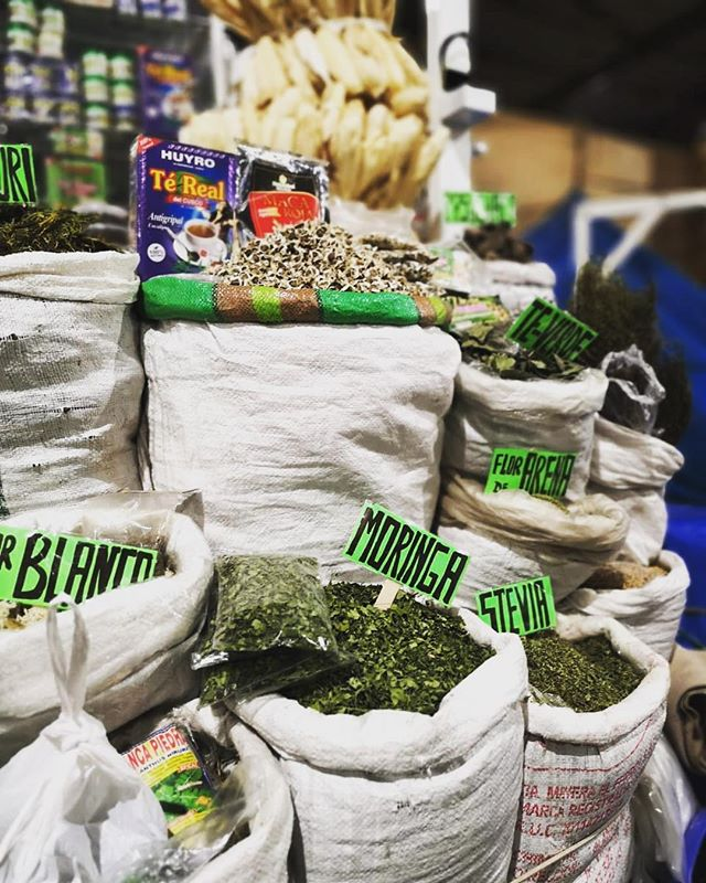 Moringa in Cusco! Moringa all around the world. Thank you @fareeseedat for the 📸