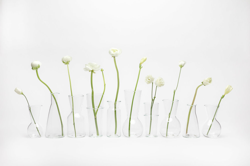 YALI DAISY VASES FLOWERS.jpg