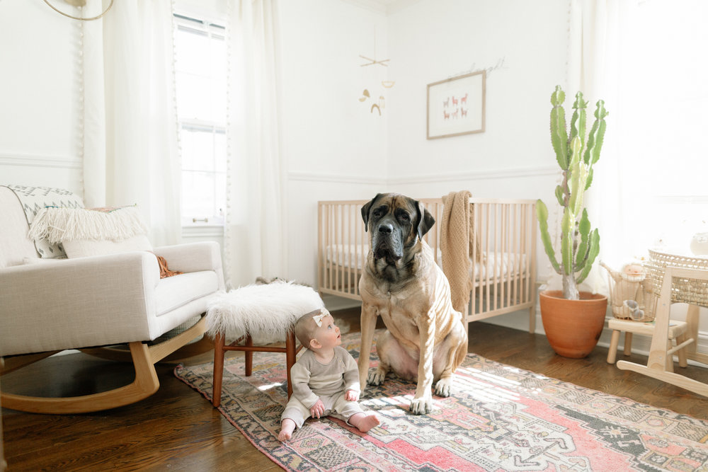 indy and oliver-10.jpg
