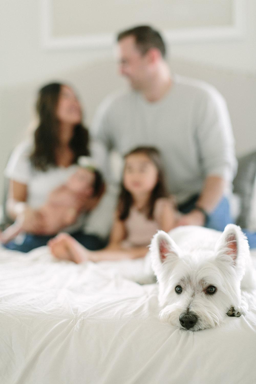 bindner family-15.jpg