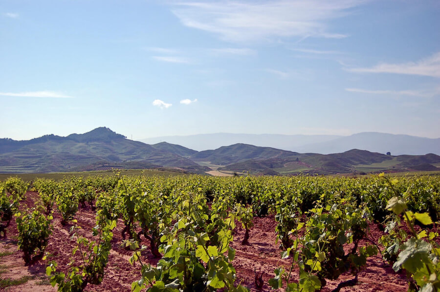 What's the Difference Between the Three Sub-Regions of Rioja, Spain? - Wine Traveler, September 2017