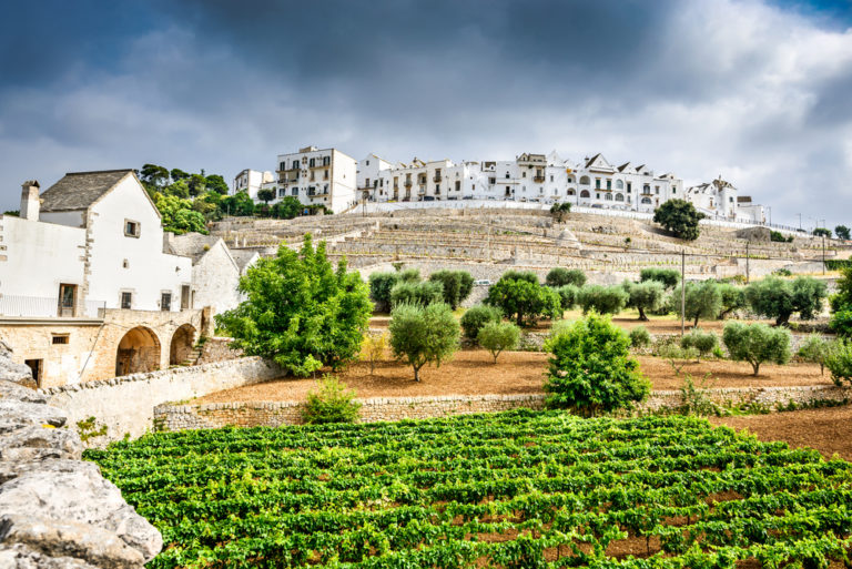 Discover Italy's Captivating Puglia Wine Region - Wine Traveler, August 2017
