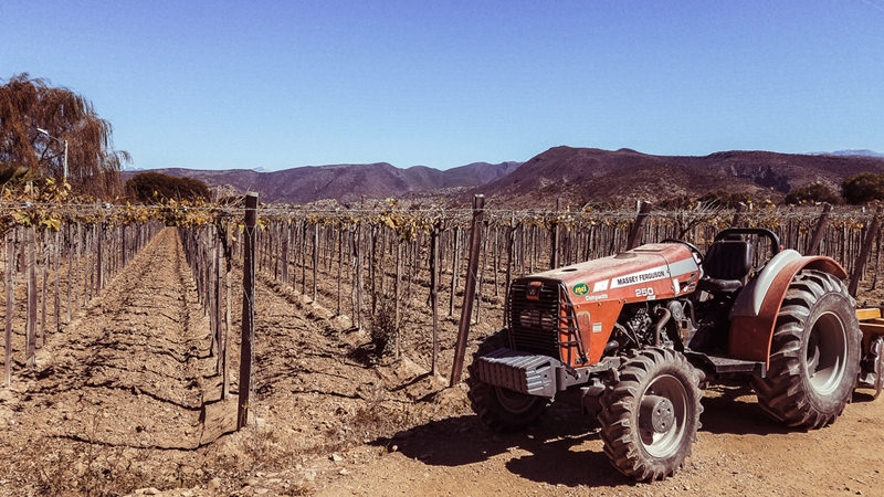 Go Way Off the Beaten Path in Bolivia's Wine Country - VinePair, August 2017