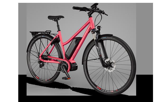MTB Cycletech  Pura Vida Luz Lady   25/45 km/h    ab CHF 2999.–  Shimano Steps/Bosch