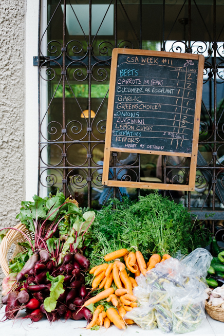 city-beet-farm-web-12.jpg