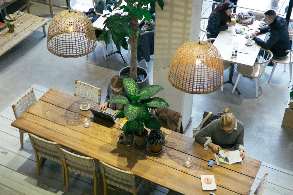 acornmag-amsterdam-Coffee-and-Coconuts-1.jpg