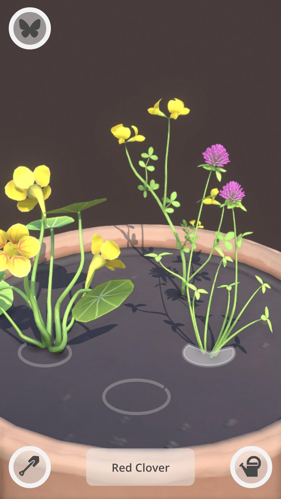 wildflower_mockup1 (1).jpeg