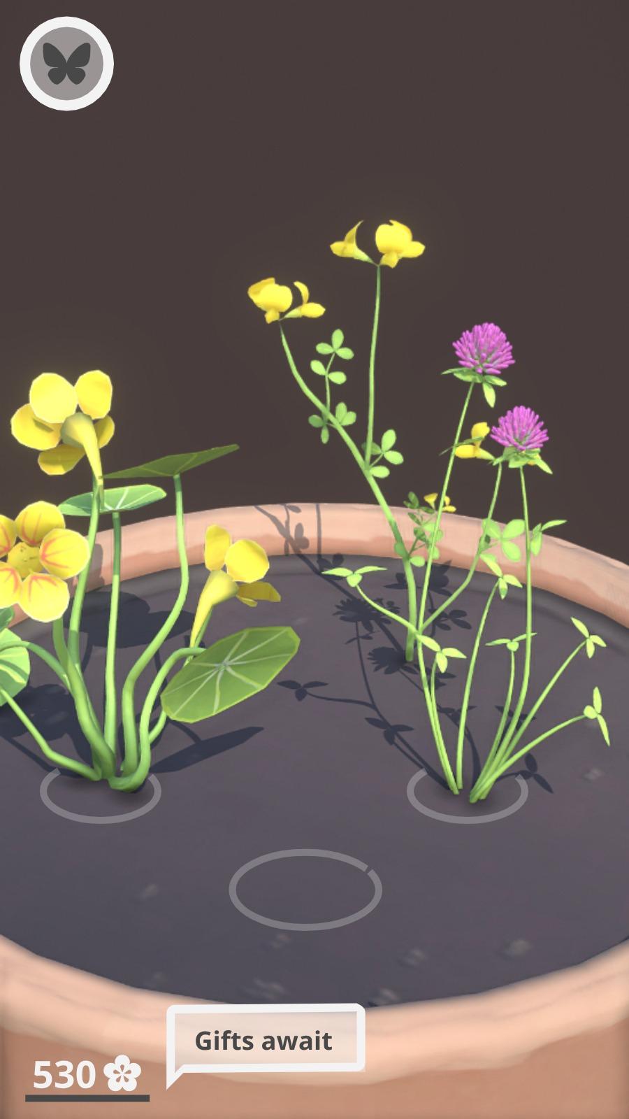wildflower_mockup1.jpeg
