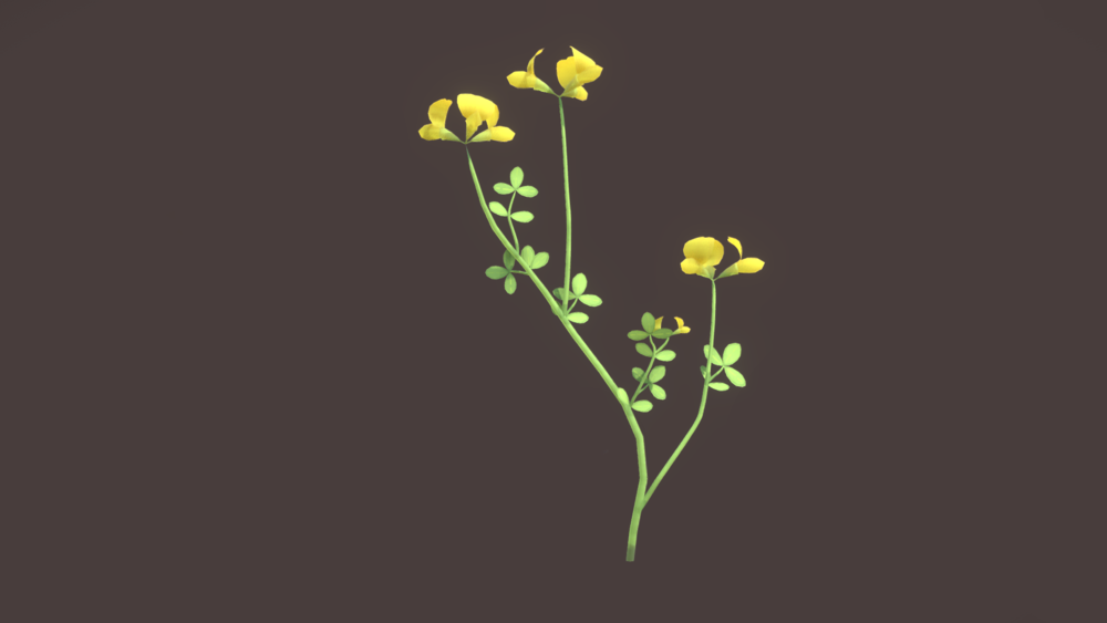 wildflower_meadow04.png