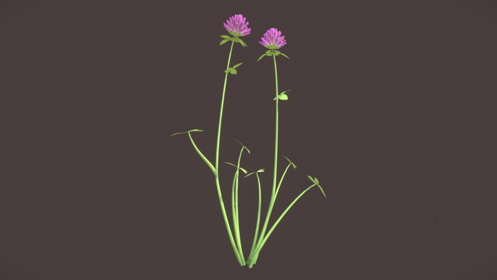 wildflower_meadow05.png
