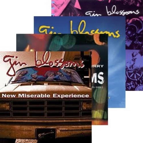 gin blossoms album montage.jpg