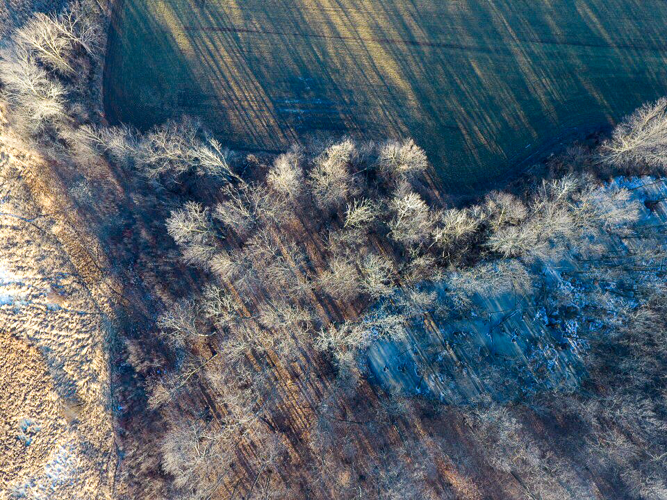 Agriculture Land Photography