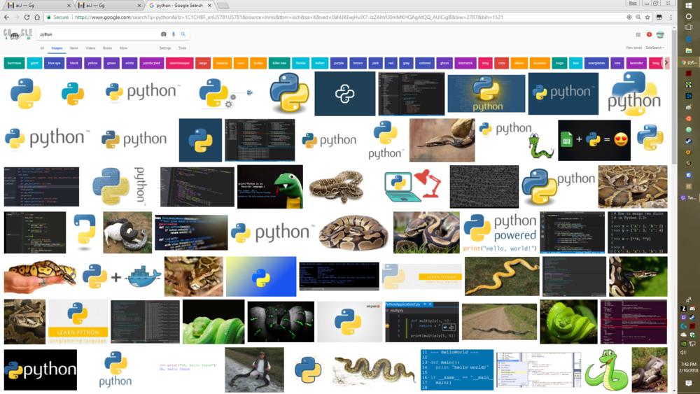 python -