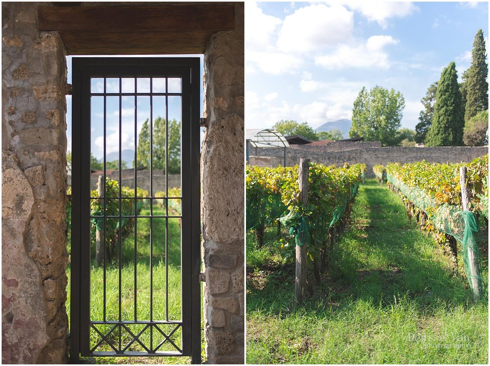 denise-van-italy-pompeii-naples_0041.jpg
