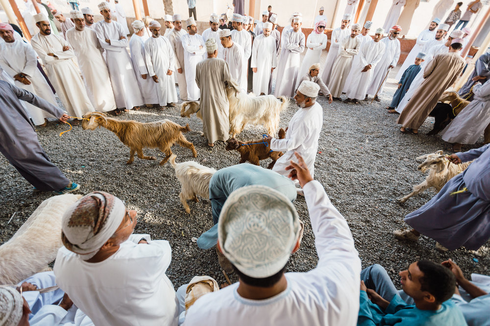 local men yell out offers for goats on auction in the ancient Nizwa market
