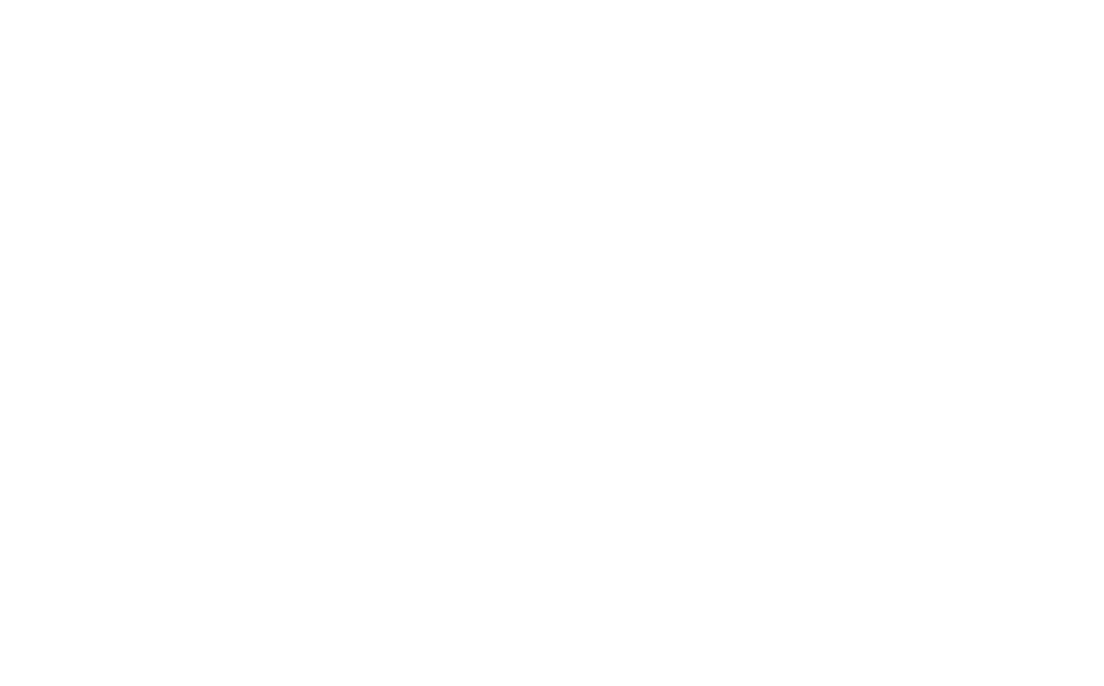 Our Revolution Lake County Endorses Alison Hartson 2018