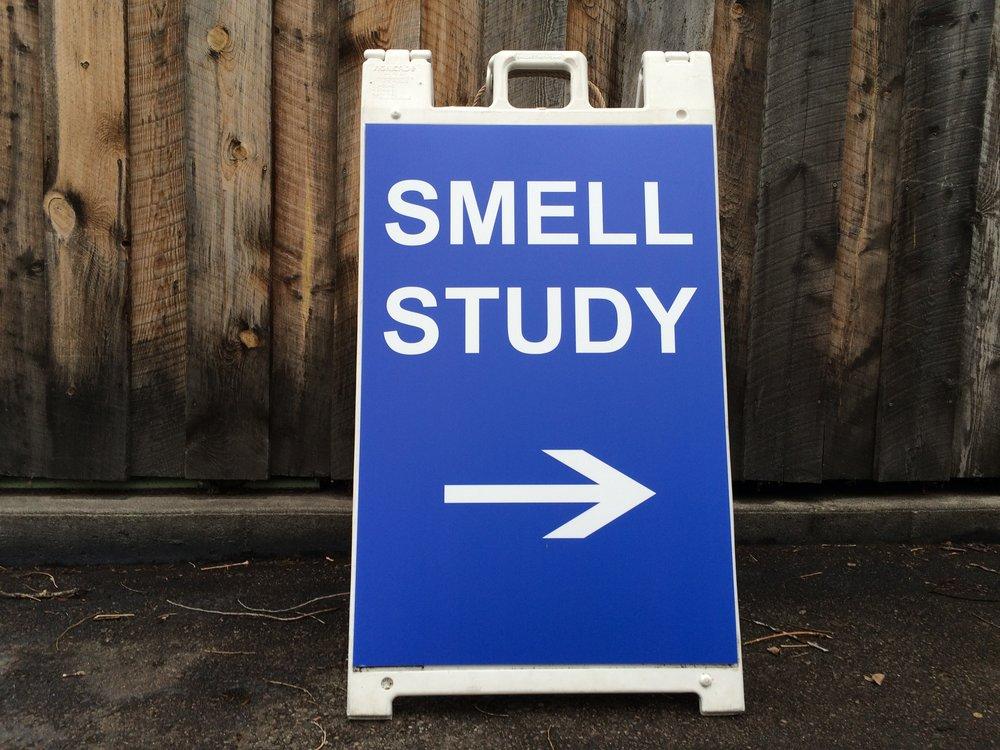 Study billboard.JPG