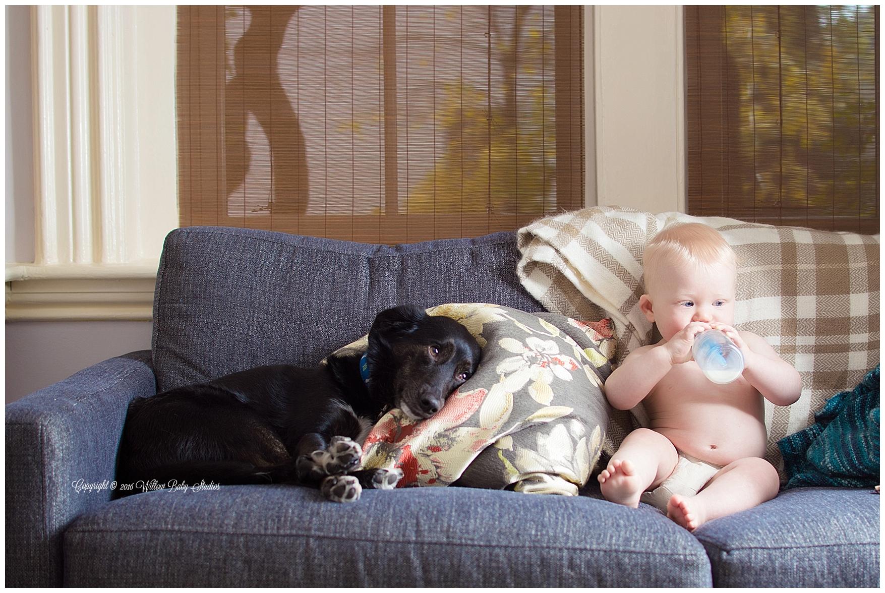 cambridge_ma_family_and_pet_photographer_01