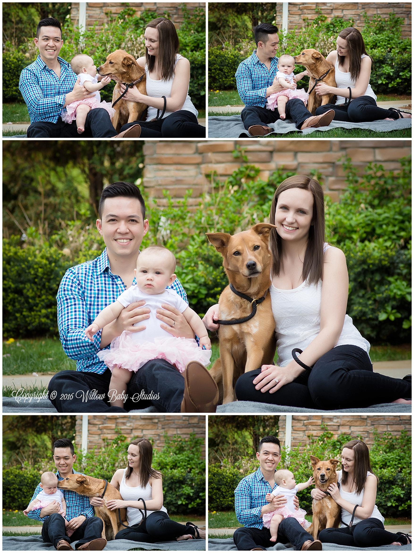 newton_ma_family_and_pet_photographer_01