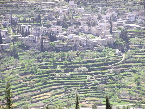 Battir and surrounding farmland