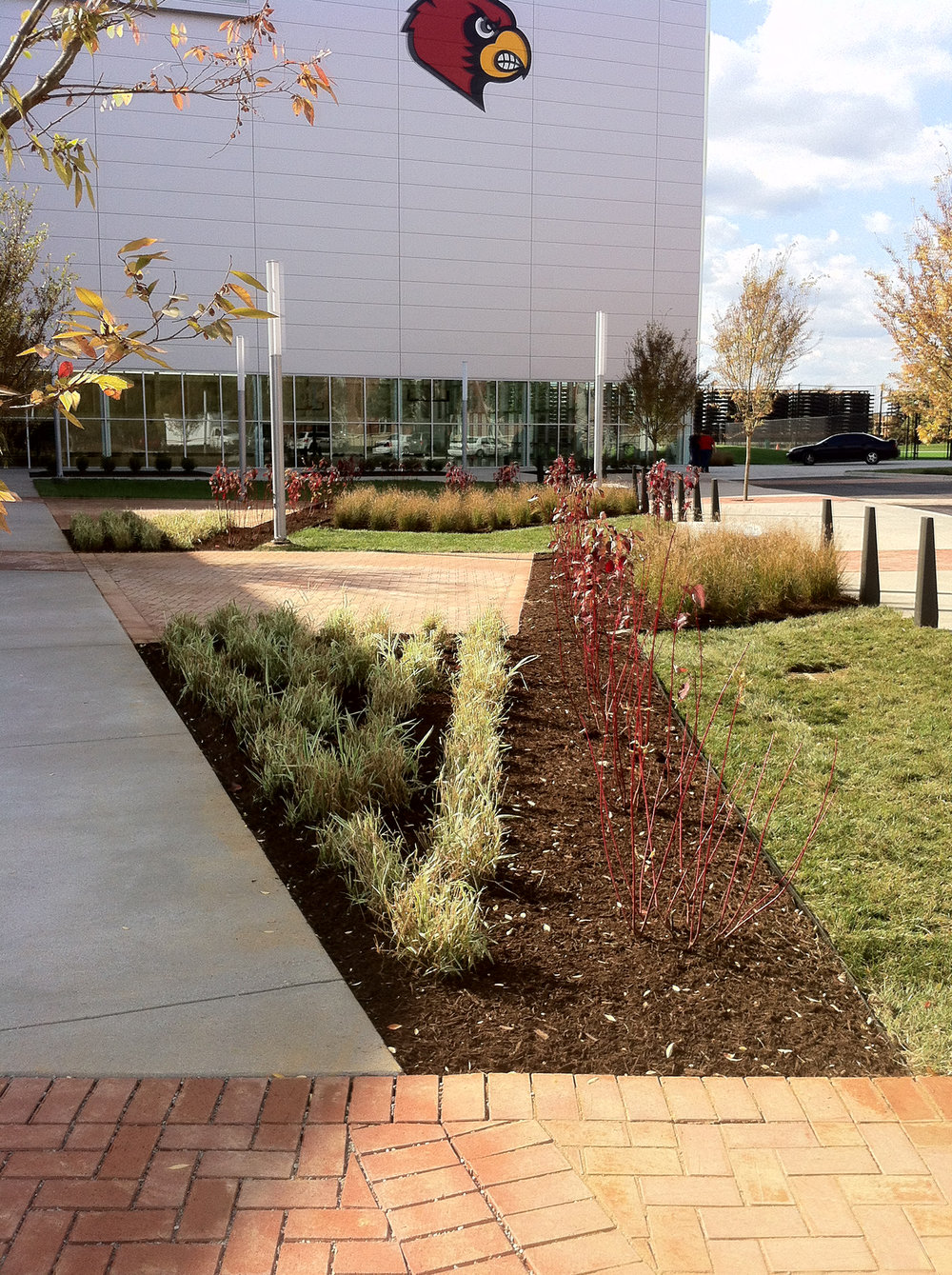 ul-src-plants1.jpg