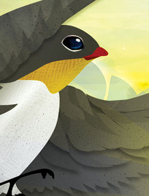 illustratie-doopsuiker-1-4img-lasercut-geboortekaartje-vogel-zwaluw-zomer-reizen-wereldkaart-by-Xantifee.jpg