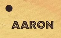 Aaron-naamkaartje-geboortekaartjes.xantifee.com_.jpg