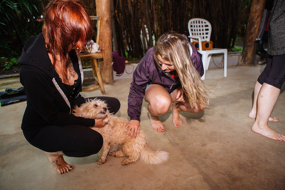 nicaragua-el-camino-travel-tour-dog.jpg