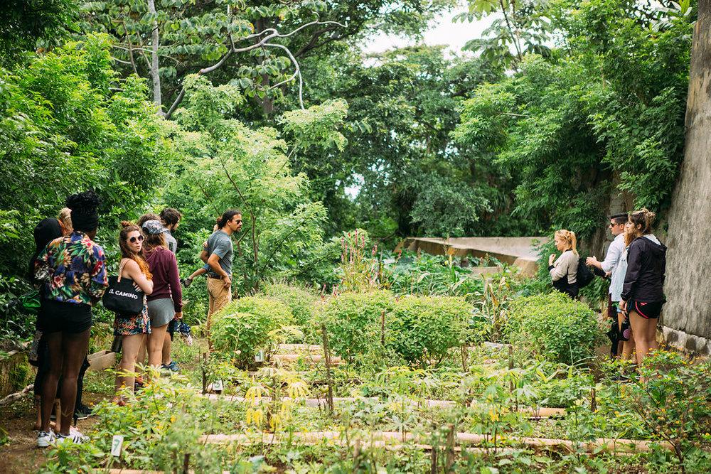 nicaragua-managua-el-camino-travel-tour-apapachoa-garden.jpg