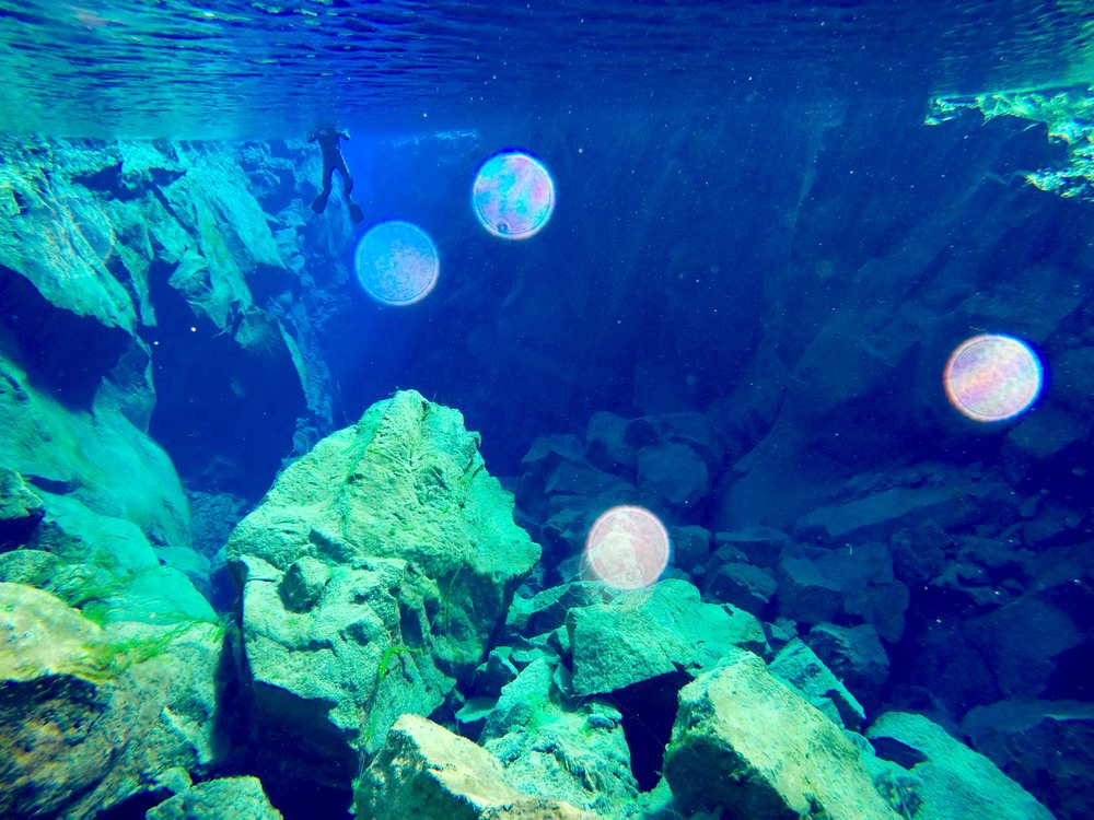 iceland-silfra-fissure-snorkel-dive-spot.jpg
