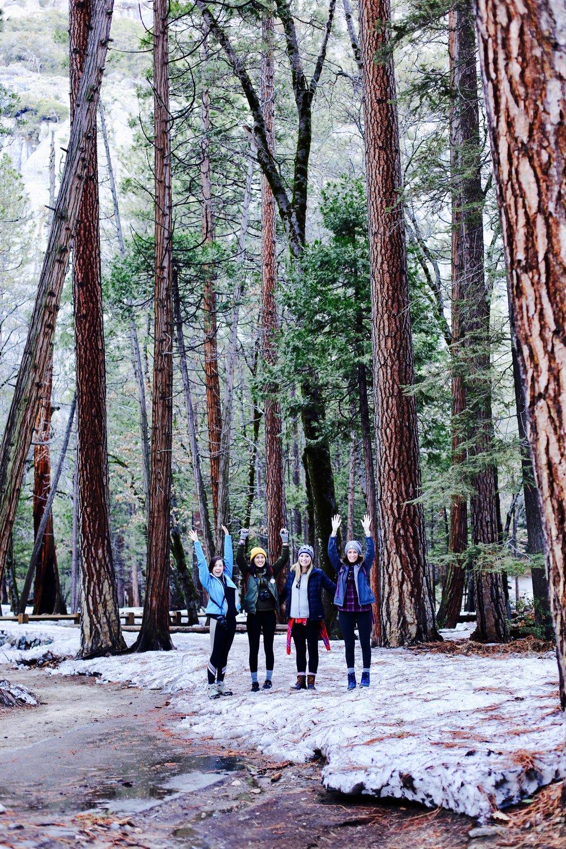 yosemite-national-park-trees.jpg