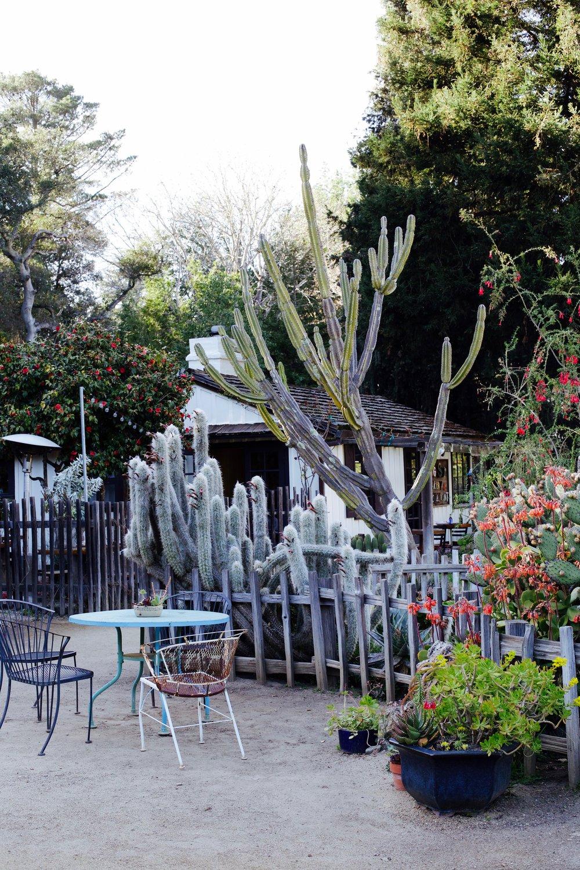 big-sur-bakery-garden.jpg