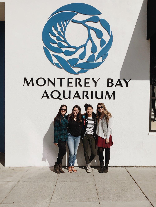 monterey-bay-aquarium-california.JPG